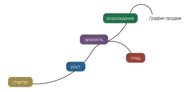 Жизненный цикл бизнеса, 5 этапов развития